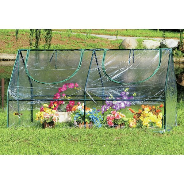 OGrow 5.75 Ft. W x 3 Ft. D Mini Greenhouse by OGrow