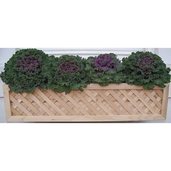 Cedar Wood Window Box Planter by Bar Harbor Cedar