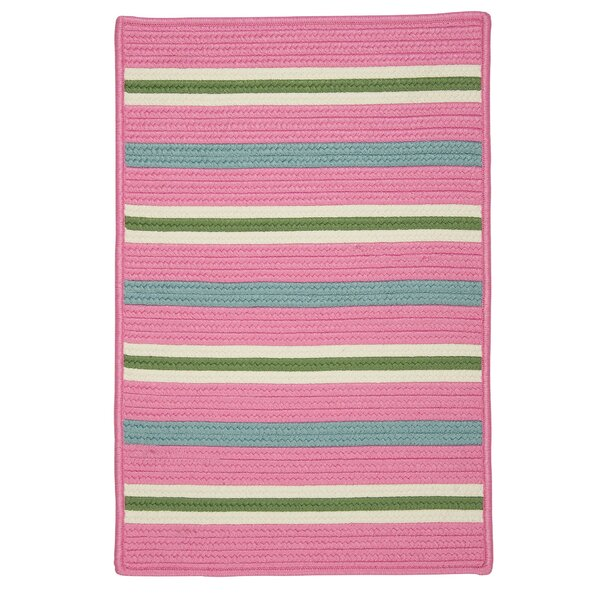 Painter Spring Braided Pink Indoor/Outdoor Area Rug by Colonial Mills