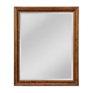 Darby Home Co Canaday Wall Mirror
