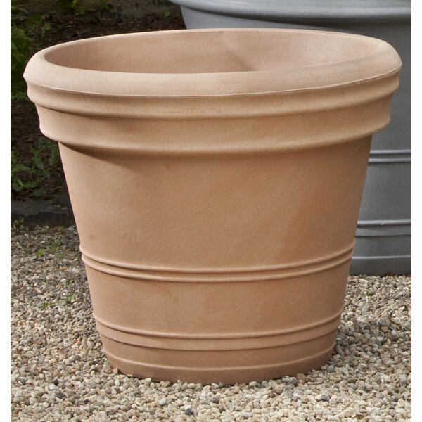 Jeffry Double Rolled Plastic Pot Rim Planter by Darby Home Co