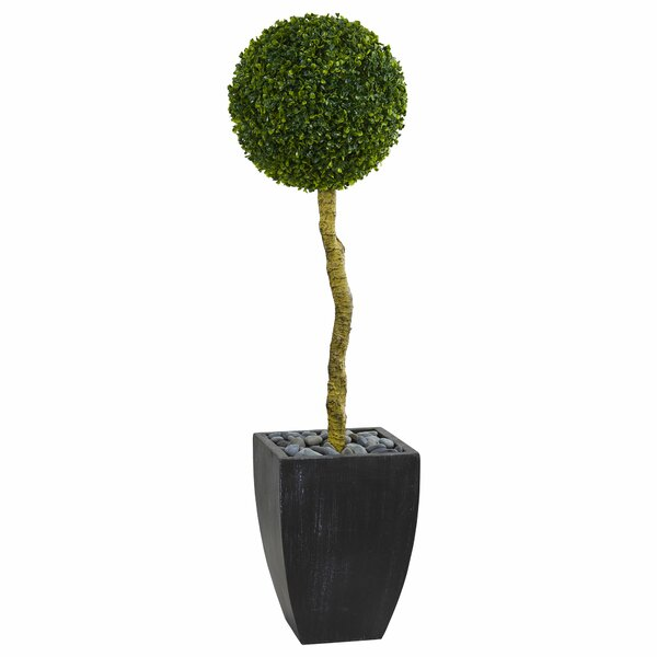 Ball Artificial Floor Boxwood Topiary in Planter by Orren Ellis