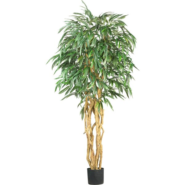 Weeping Ficus Tree in Pot by Nearly Natural