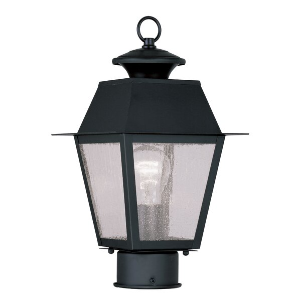 Cynda Outdoor 1-Light Lantern Head by Darby Home Co
