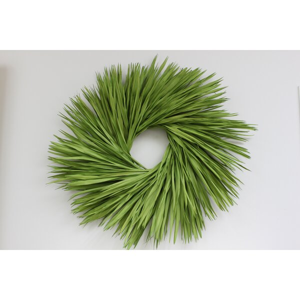 """Preserved Paradise 36"""" Palm Wreath by Highland Dunes"""