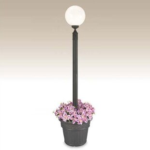Buy clear European Outdoor 1-Light 85 Post Light By Patio Living Concepts