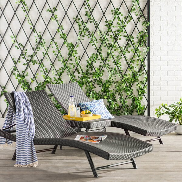 Alejandre Chaise Lounger Set by Brayden Studio