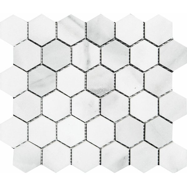 Verona Hexagon 2 x 2 Stone Mosaic Tile in Bianco Polished by Parvatile