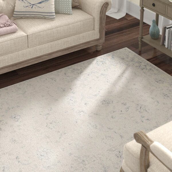 Akron Creek Cream/Gray Area Rug by Lark Manor
