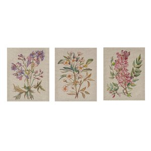 Linen Botanicals 3 Piece Painting Print on Wrapped Canvas by Lark Manor
