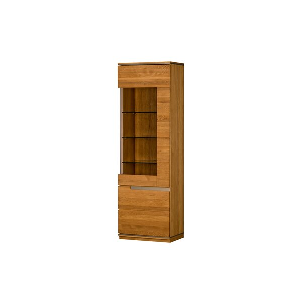 Champlin 1 Door Lighted China Cabinet by Brayden Studio