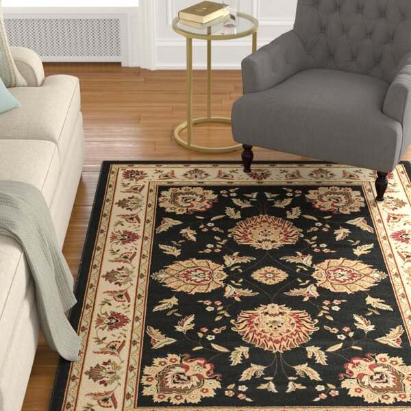 Ottis Black/Ivory Area Rug by Charlton Home