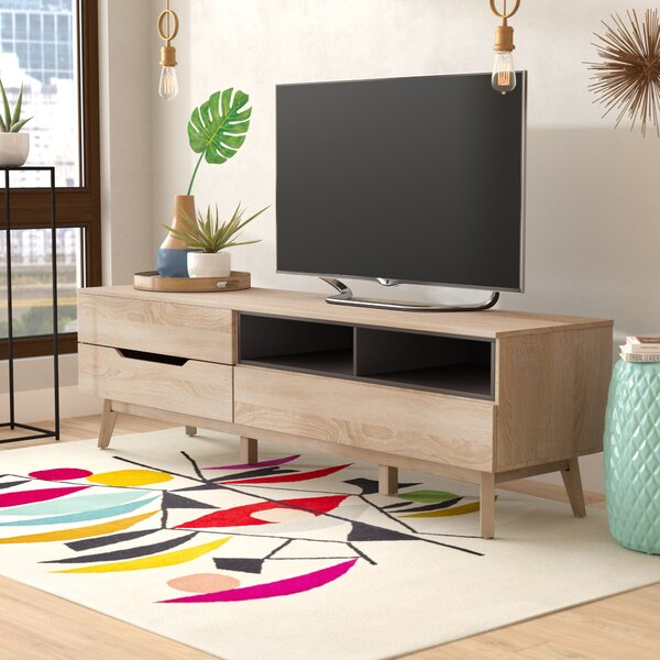 Ezra TV Stand for TVs up to 70 by Langley Street
