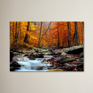 'Ultimate Truth' Photographic Print on Wrapped Canvas by Trademark Fine Art