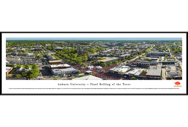 NCAA Auburn University - Oaks by James Blakeway Framed Photographic Print by Blakeway Worldwide Panoramas, Inc