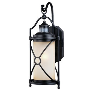 Helvey Dualux® 1-Light Outdoor Wall Lantern By Alcott Hill Outdoor Lighting