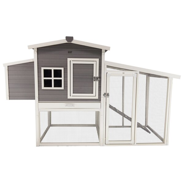 Rooney Chicken Coop with Pen by Tucker Murphy Pet