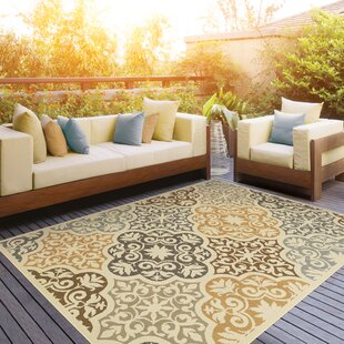 Colton Yellow Brown Indoor Outdoor Area Rug