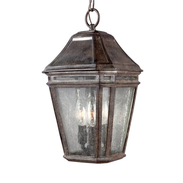 Maxine 3-Light Outdoor Hanging Lantern by Darby Home Co
