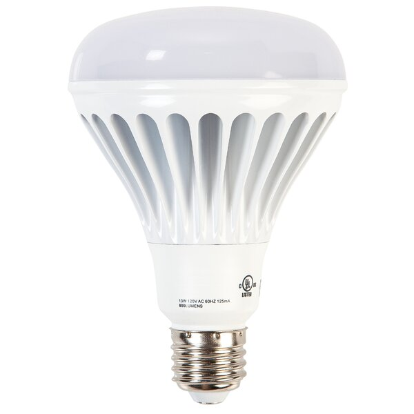 Ohyama 13W E26/Medium LED Light Bulb by IRIS USA, Inc.