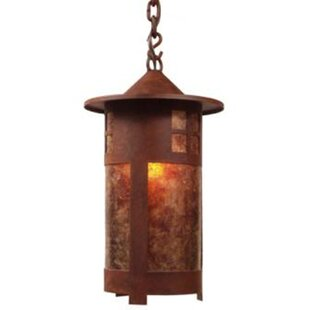 Affordable Pasadena 1-Light Outdoor Hanging Lantern By Steel Partners