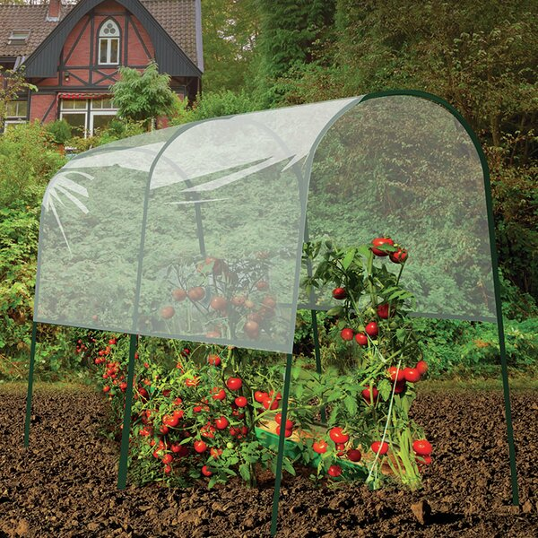 Tomato 4 Ft. W x 6.5 Ft. D Mini Greenhouse by Gardman