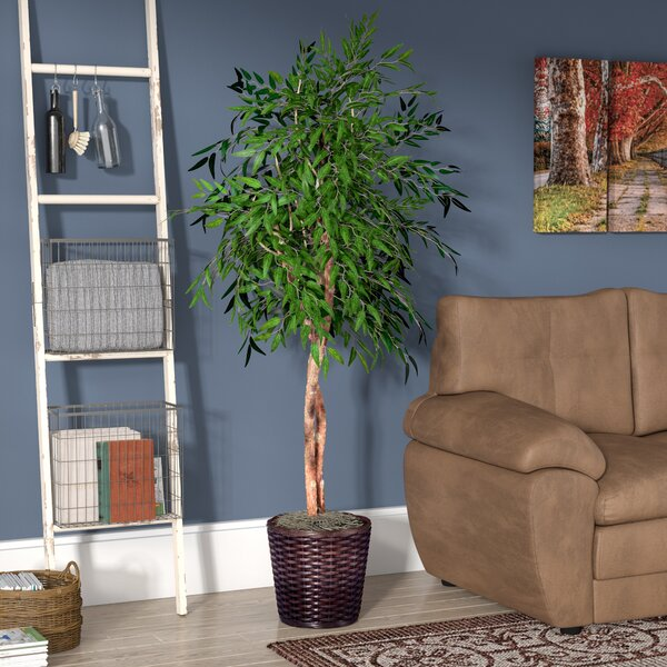 Artificial Green Ficus Smilax Tree in Pot by Red Barrel Studio