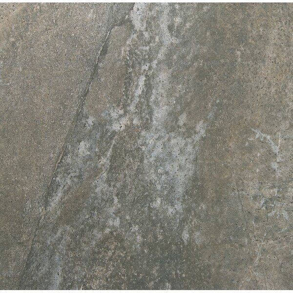 Trovata 13 x 13 Porcelain Field Tile in Scroll by Emser Tile