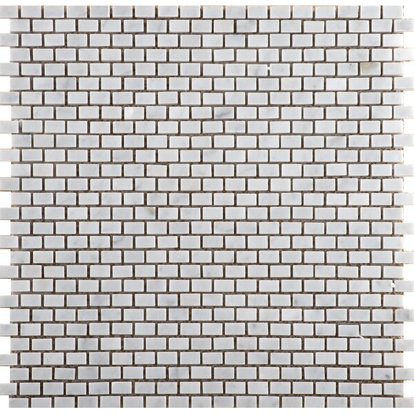 Marble .5 x .5/12 x 12 Mosaic Tile in Bianco Gioia by Emser Tile