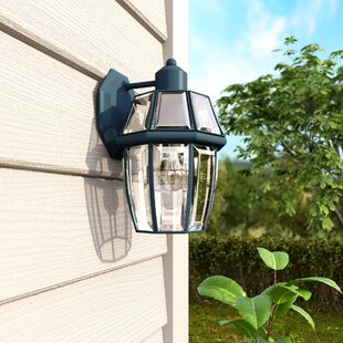 Affordable Price Lavergne 1-Light Outdoor Wall Lantern By Three Posts