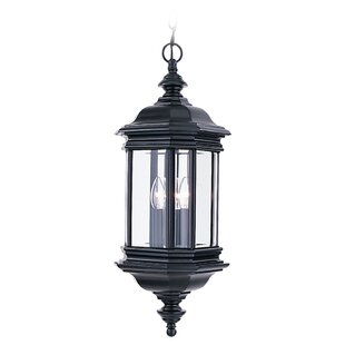 Burrell 3-Light Outdoor Hanging Lantern By Darby Home Co Outdoor Lighting