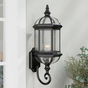 Reviews Hausmann 1-Light Outdoor Wall lantern By Three Posts
