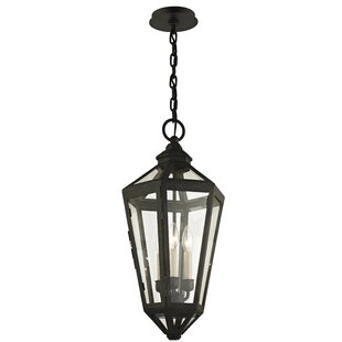 Online Reviews Dhavale 3-Light Outdoor Hanging Lantern By Darby Home Co