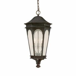 Inman Park 3-Light Outdoor Hanging Lantern By Capital Lighting Outdoor Lighting