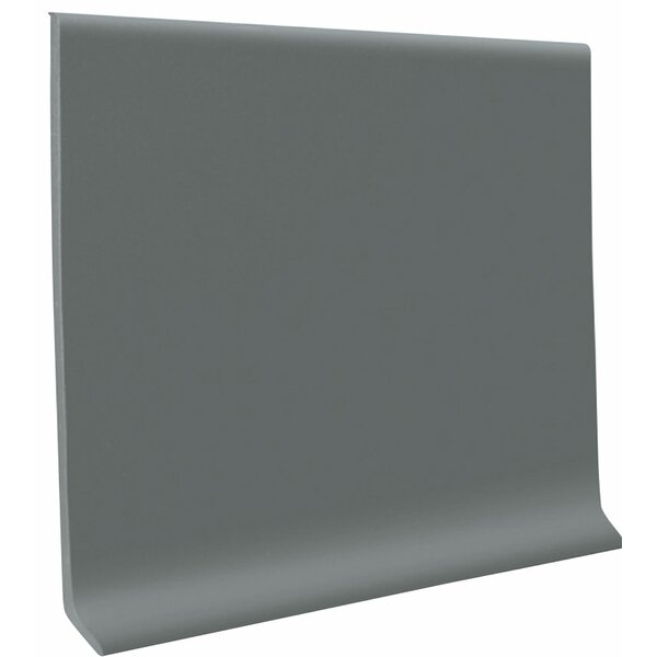 0.13 x 1440 x 6 Cove Molding in Dark Gray by ROPPE