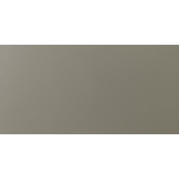 Times Square 12 x 24 Porcelain Field Tile in Gray by Emser Tile