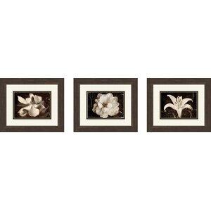 'Garden Journal' Graphic Art on Canvas (Set of 3) by Three Posts