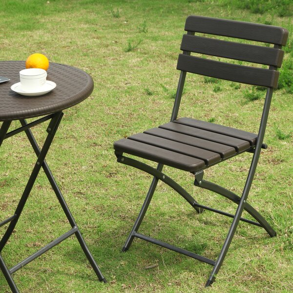 Danielson Bistro-Style Folding Patio Dining Chair (Set of 2) by Winston Porter