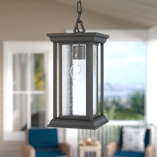 Samanda 1-Light Outdoor Hanging Lantern By Darby Home Co Outdoor Lighting