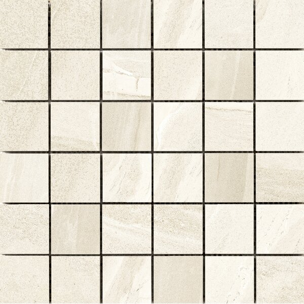 Access 2 x 2 Porcelain Mosaic Tile in Route by Emser Tile