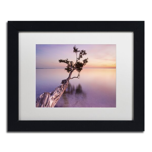 Water Tree XI by Moises Levy Framed Photographic Print by Trademark Fine Art