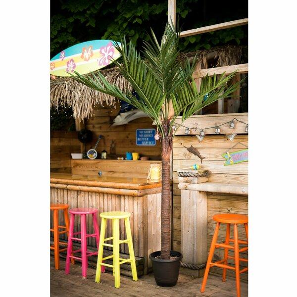 UV Kentia Palm Tree by Bay Isle Home