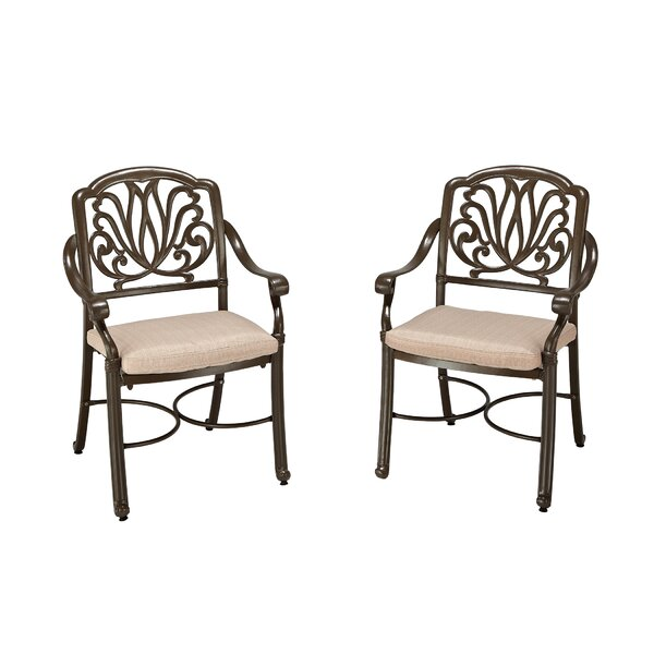 LaMoure Swivel Patio Dining Chair with Cushion (Set of 2) by One Allium Way