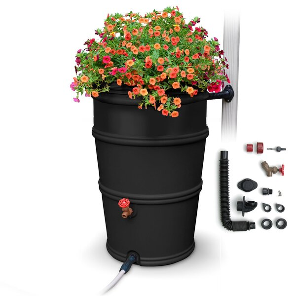 RainStation 50 Gallon Rain Barrel by EarthMindedConsumerProducts
