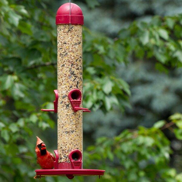 Tube Bird Feeder by Perky Pet