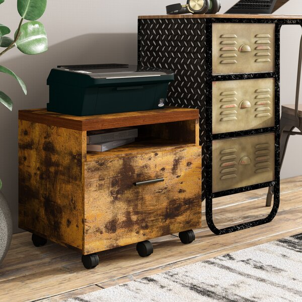 Karina Lateral 1-Drawer Vertical Filing Cabinet by Williston Forge