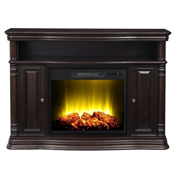 Nataly 48 TV Stand with Electric Fireplace by Charlton Home