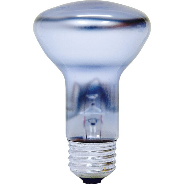 45W 120-Volt (2550K) Light Bulb by GE