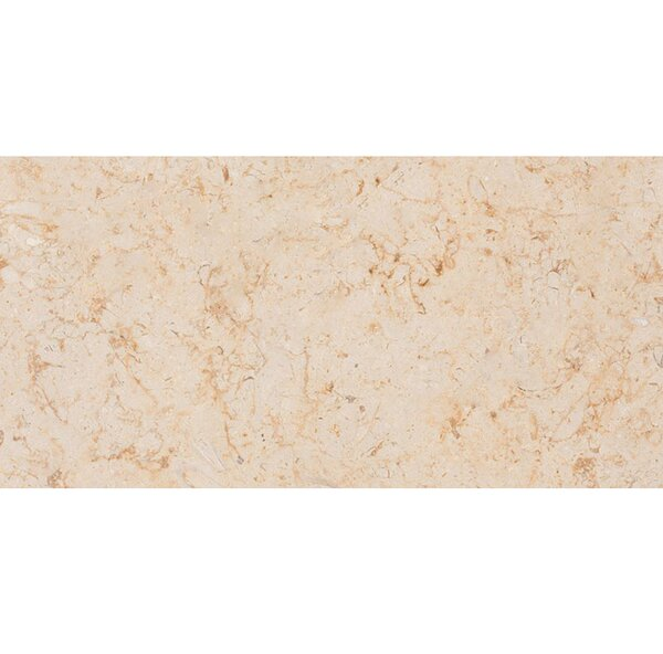 Lyon 12 x 24 Stone Field Tile in Brushed Beige by Parvatile