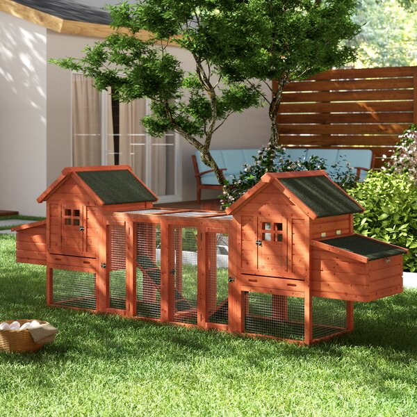Freddie Duplex Chicken Coop with Outdoor Run by Ar